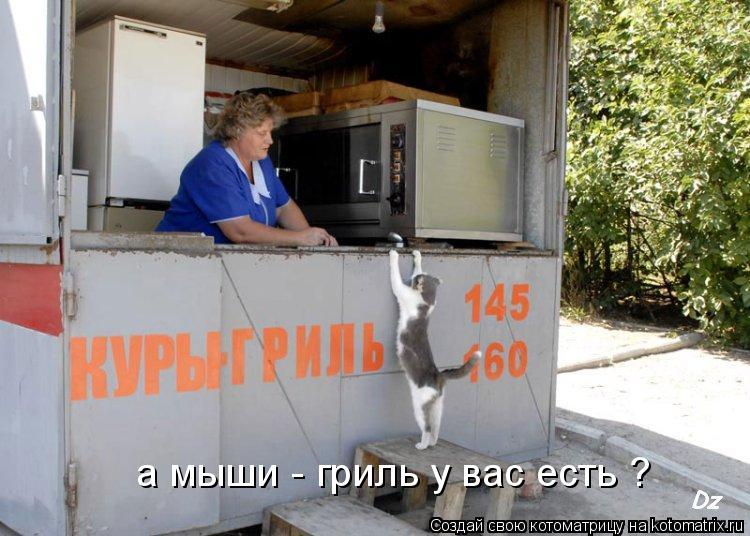 Котоматрица: а мыши - гриль у вас есть ?
