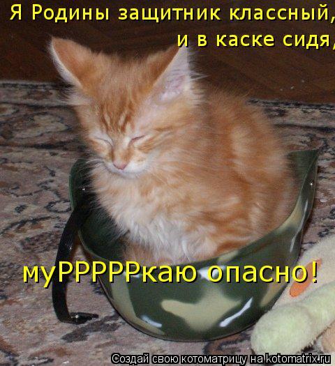 Котоматрица: Я Родины защитник классный, и в каске сидя, муРРРРРкаю опасно!