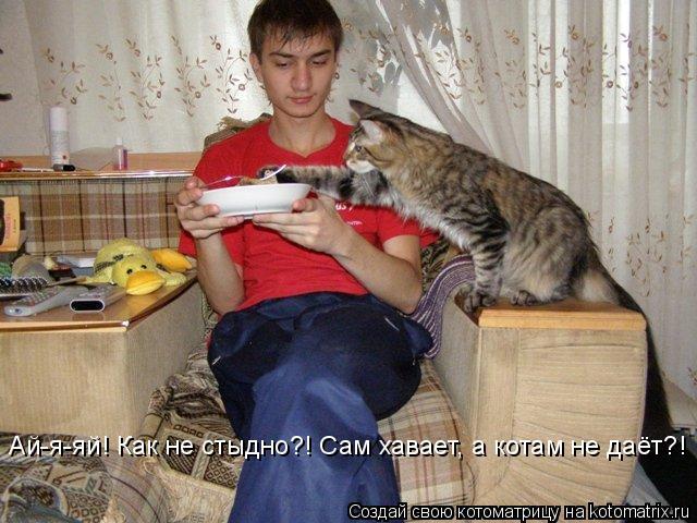 Котоматрица: Ай-я-яй! Как не стыдно?! Сам хавает, а котам не даёт?!
