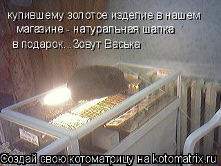 Котоматрица: купившему золотое изделие в нашем  в подарок...Зовут Васька магазине - натуральная шапка магазине - натуральная шапка