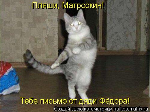 Котоматрица: Пляши, Матроскин! Тебе письмо от дяди Фёдора!