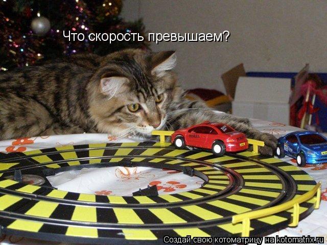 Котоматрица: Что скорость превышаем?