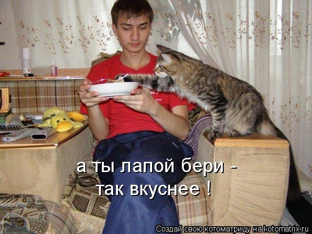 Котоматрица: а ты лапой бери - так вкуснее !