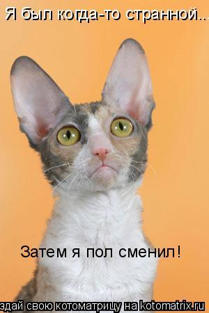Котоматрица: Я был когда-то странной... Затем я пол сменил!