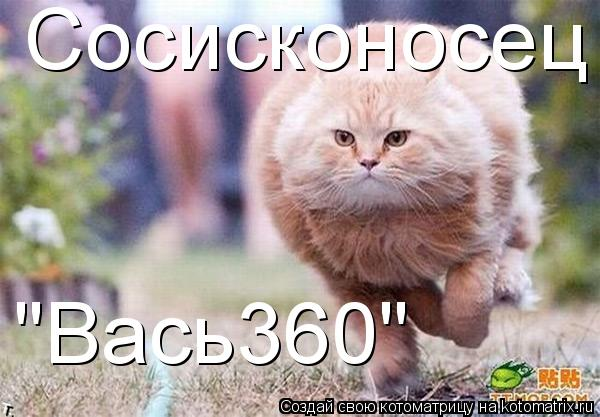 "Котоматрица: Сосисконосец ""Вась360"""