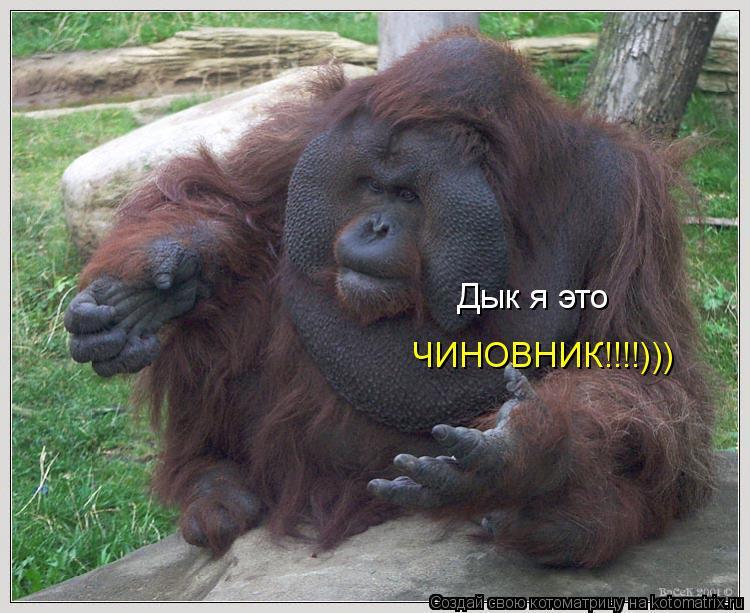 Котоматрица: Дык я это  ЧИНОВНИК!!!!)))