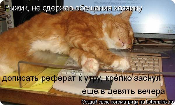 Котоматрица: Рыжик, не сдержав обещания хозяину  дописать реферат к утру, крепко заснул  еще в девять вечера