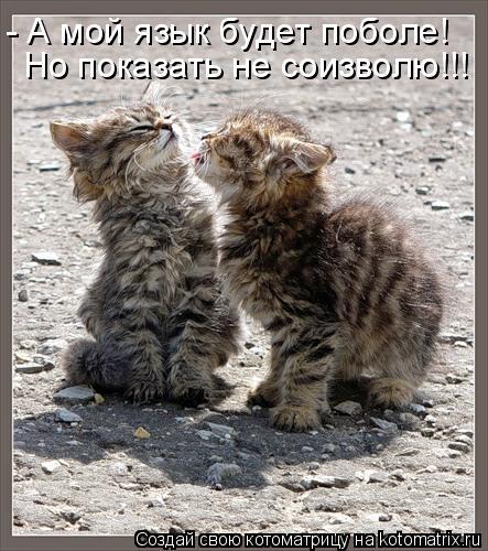 Котоматрица: - А мой язык будет поболе! Но показать не соизволю!!!