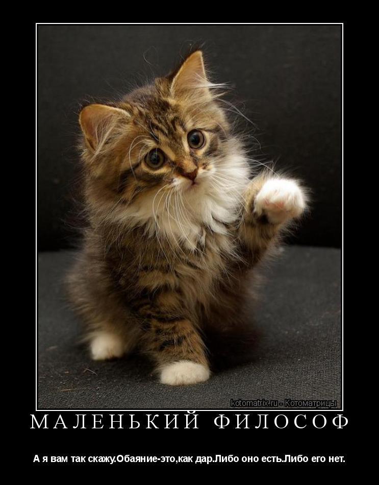 Котоматрица: маленький философ А я вам так скажу.Обаяние-это,как дар.Либо оно есть.Либо его нет.