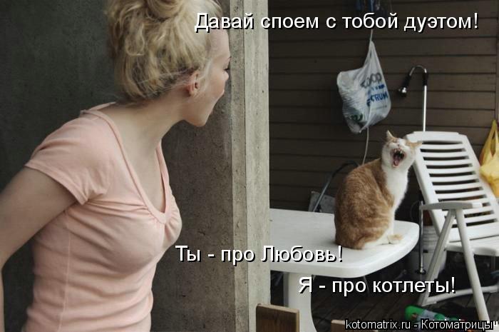 Котоматрица: Давай споем с тобой дуэтом! Ты - про Любовь! Я - про котлеты!