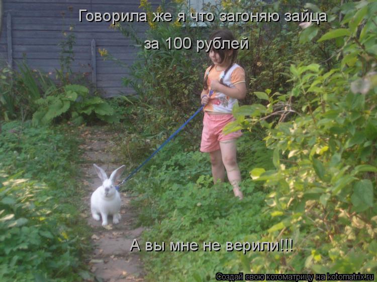 Котоматрица: Говорила же я что загоняю зайца за 100 рублей А вы мне не верили!!!