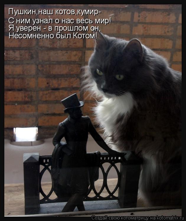 Котоматрица: Пушкин,наш котов,кумир- С ним узнал о нас весь мир! Я уверен - в прошлом он, Несомненно был Котом!