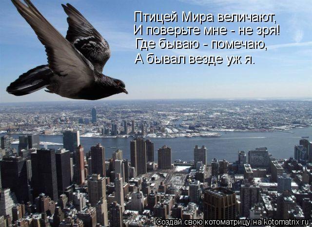 Котоматрица: Птицей Мира величают, И поверьте мне - не зря! Где бываю - помечаю, А бывал везде уж я.