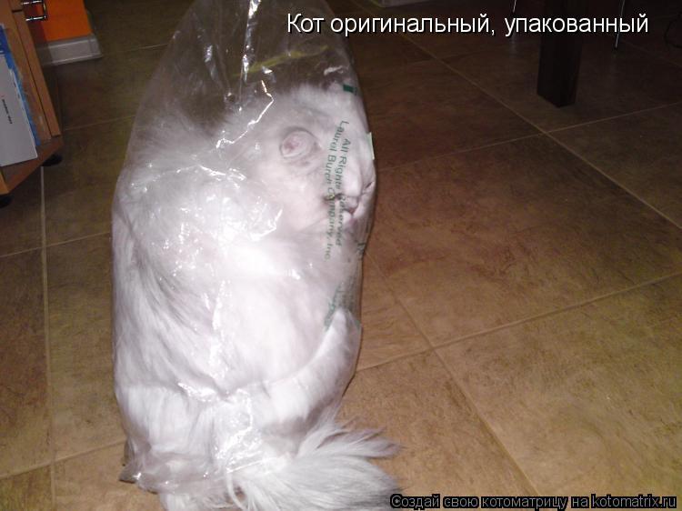 Котоматрица: Кот оригинальный, упакованный Кот оригинальный, упакованный