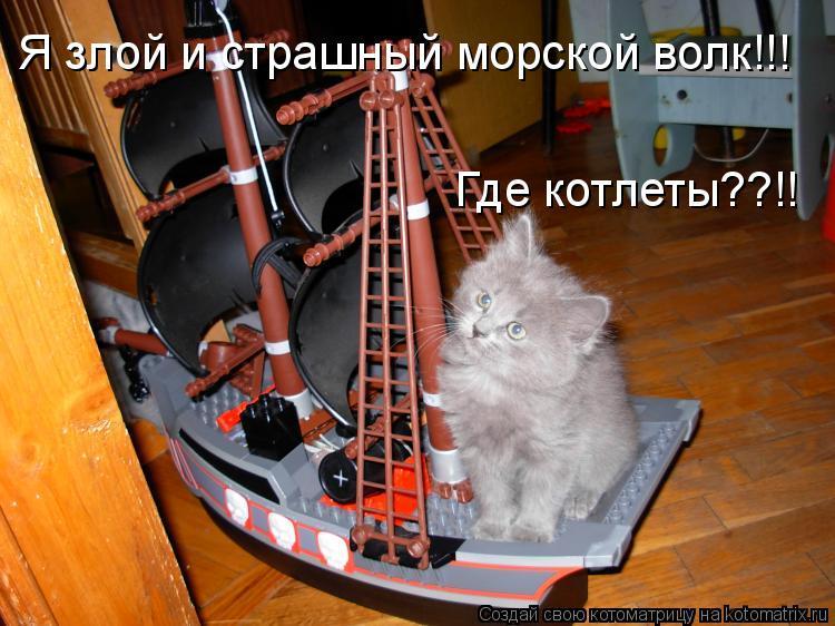 Котоматрица: Я злой и страшный морской волк!!! Где котлеты??!!