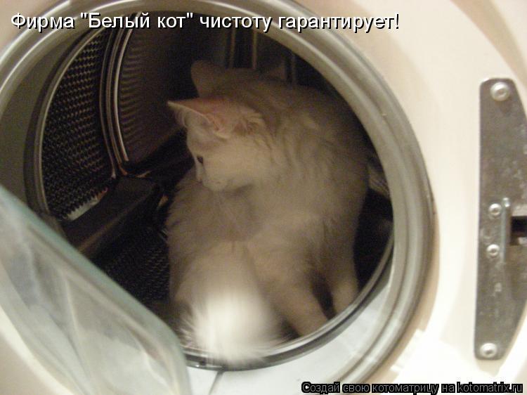 """Котоматрица: Фирма """"Белый кот"""" чистоту гарантирует!"""