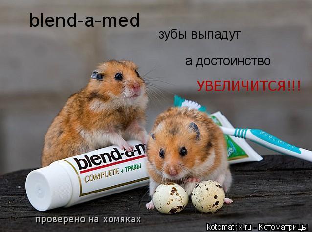Котоматрица: blend-a-med зубы выпадут а достоинство УВЕЛИЧИТСЯ!!! проверено на хомяках