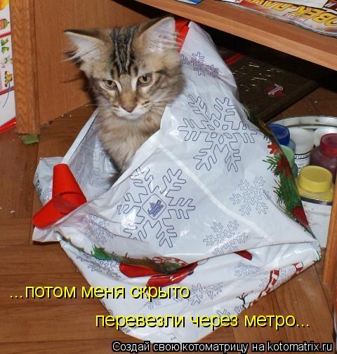 Котоматрица: ...потом меня скр ...потом меня скрыто перевезли через метро...