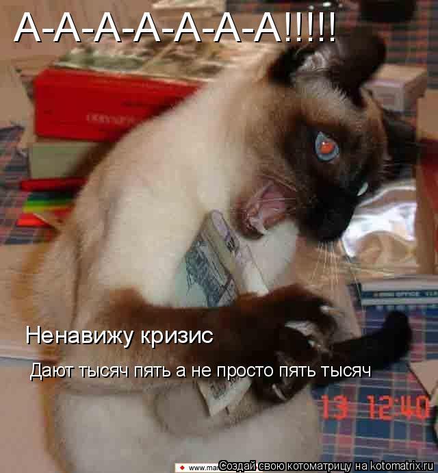 Котоматрица: А-А-А-А-А-А-А!!!!!  Ненавижу кризис Дают тысяч пять а не просто пять тысяч