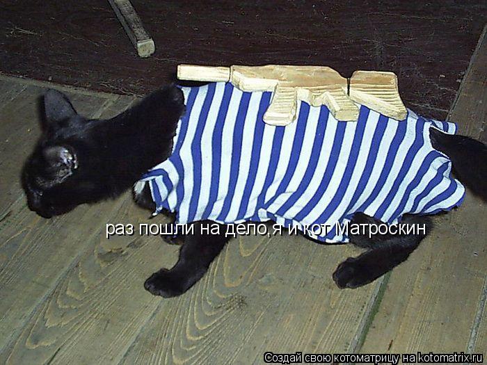 Котоматрица: раз пошли на дело,я и кот Матроскин