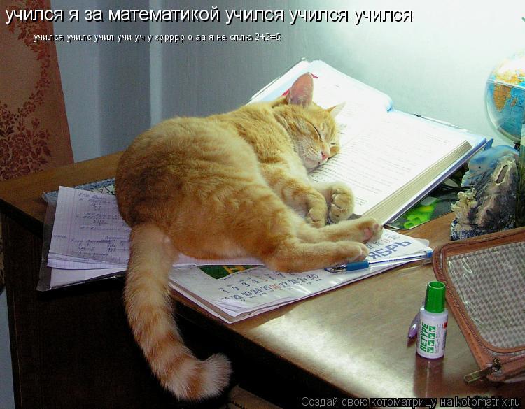 Котоматрица: учился я за математикой учился учился учился учился училс учил учи уч у хррррр о аа я не сплю 2+2=6