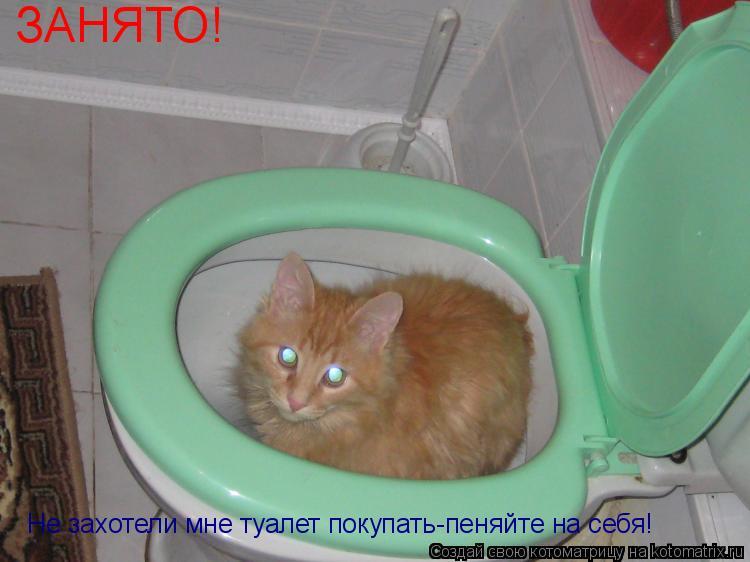 Котоматрица: ЗАНЯТО! Не захотели мне туалет покупать-пеняйте на себя!