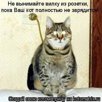 Котоматрица: пока Ваш кот полностью не зарядится! Не вынимайте вилку из розетки,