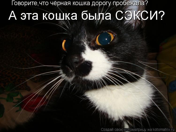 Котоматрица: Говорите,что чёрная кошка дорогу пробежала? А эта кошка была СЭКСИ?