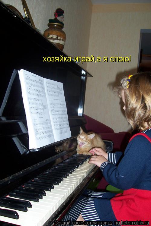 Котоматрица: хозяйка играй,а я спою!