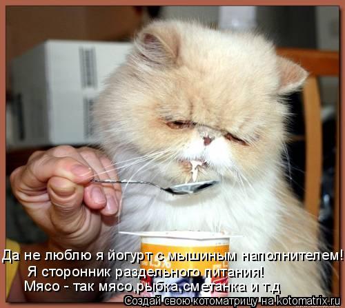 Котоматрица: Да не люблю я йогурт с мышиным наполнителем! Я сторонник раздельного питания! Мясо - так мясо,рыбка,сметанка и т.д
