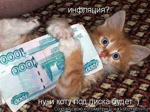 Котоматрица: инфляция? ну, и коту под писка будет :)