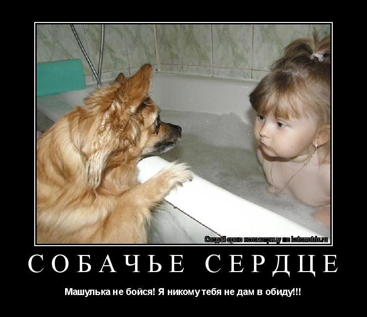 Котоматрица: собачье сердце Машулька не бойся! Я никому тебя не дам в обиду!!!