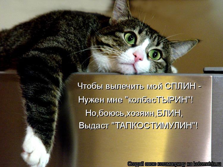 """Котоматрица: Чтобы вылечить мой СПЛИН - Нужен мне """"колбасТЫРИН""""! Но,боюсь,хозяин,БЛИН, Выдаст """"ТАПКОСТИМУЛИН""""!"""