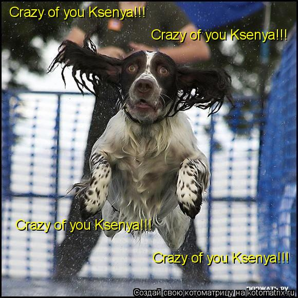 Котоматрица: Crazy of you Ksenya!!! Crazy of you Ksenya!!! Crazy of you Ksenya!!! Crazy of you Ksenya!!!