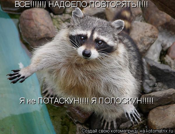 Котоматрица: ВСЕ!!!!!!! НАДОЕЛО ПОВТОРЯТЬ!!!!! Я не ПОТАСКУН!!!! Я ПОЛОСКУН!!!!!