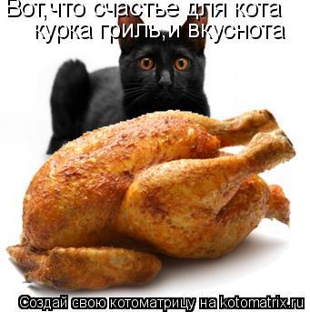 Котоматрица: Вот,что счастье для кота курка гриль,и вкуснота