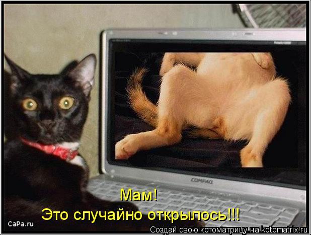 Котоматрица: Мам! Это случайно открылось!!!