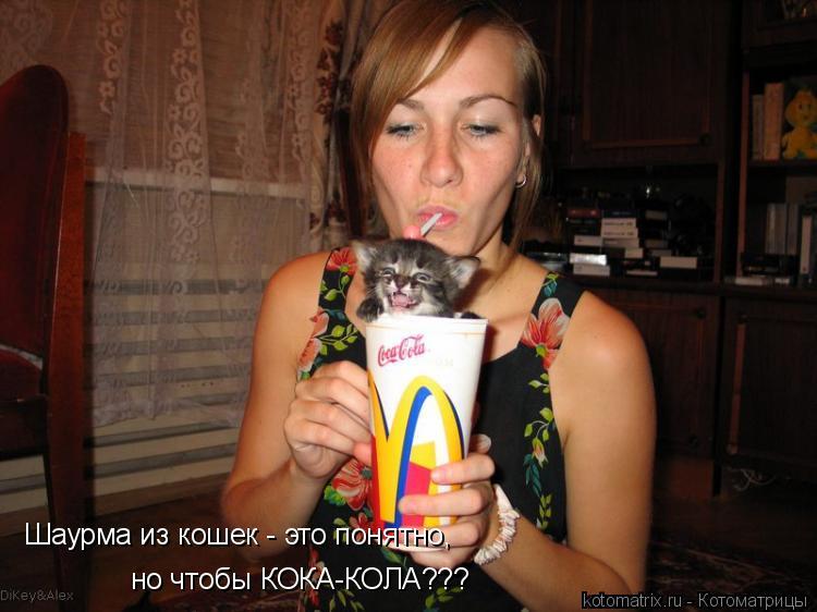 Котоматрица: Шаурма из кошек - это понятно, но чтобы КОКА-КОЛА???