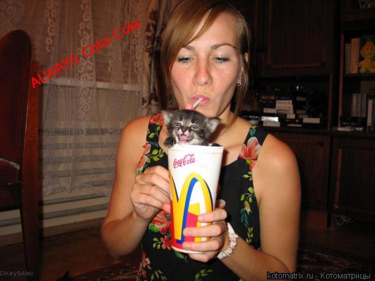 Котоматрица: ALWAYS Cota-Cola