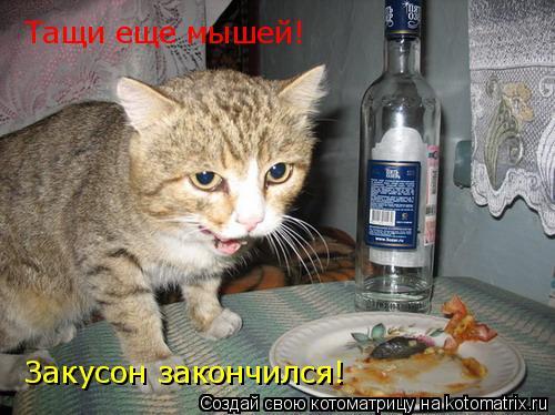 Котоматрица: Тащи еще мышей! Закусон закончился!