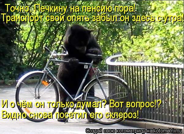 Котоматрица: Точно, Печкину на пенсию пора! Транспорт свой опять забыл он здесь с утра! И о чём он только думал? Вот вопрос!? Видно снова посетил его склеро