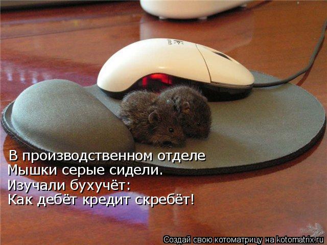 Котоматрица: В производственном отделе Мышки серые сидели. Изучали бухучёт: Как дебёт кредит скребёт!