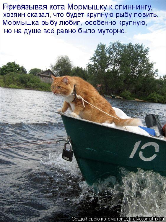 Котоматрица: Привязывая кота Мормышку к спиннингу,  хозяин сказал, что будет крупную рыбу ловить. Мормышка рыбу любил, особенно крупную,  но на душе всё р