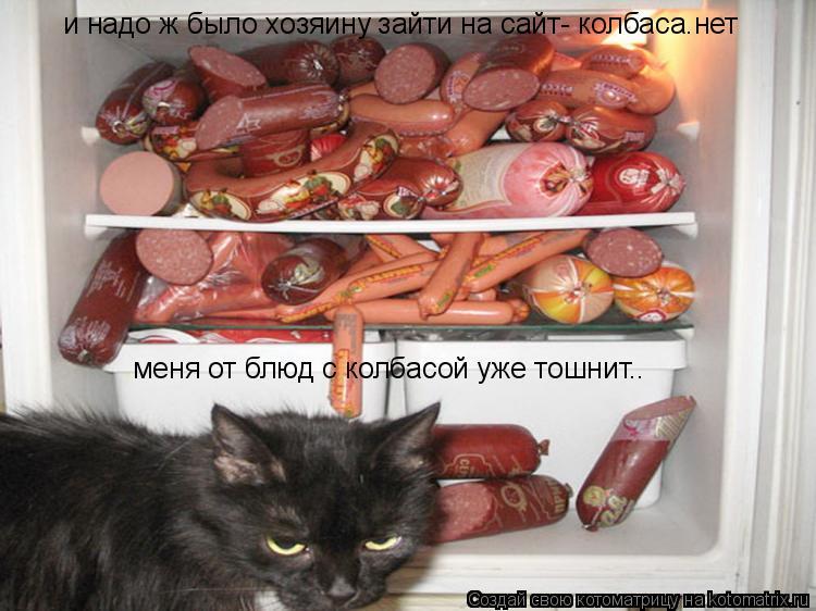 Котоматрица: и надо ж было хозяину зайти на сайт- колбаса.нет  меня от блюд с колбасой уже тошнит..