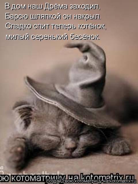 Котоматрица: В дом наш Дрёма заходил, Барсю шляпкой он накрыл. Сладко спит теперь котёнок, милый серенький бесёнок.