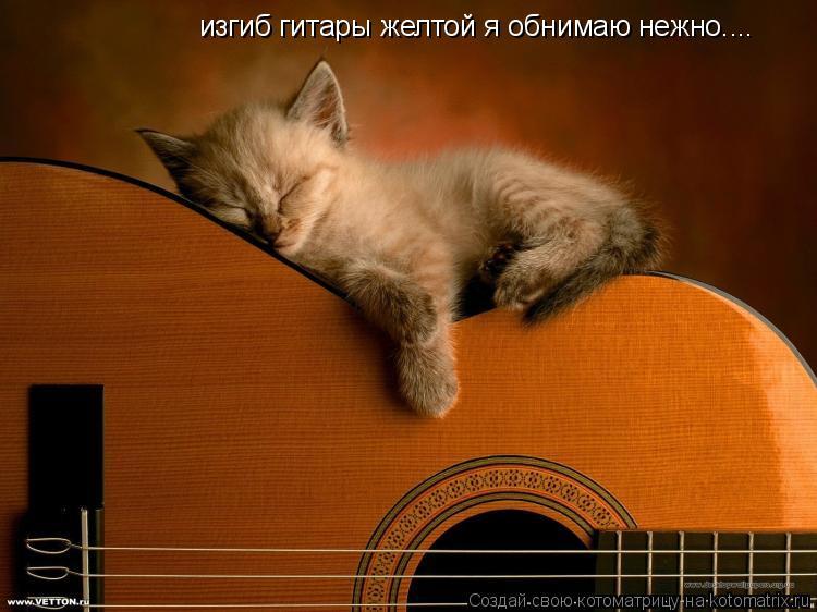 Котоматрица: изгиб гитары желтой я обнимаю нежно....