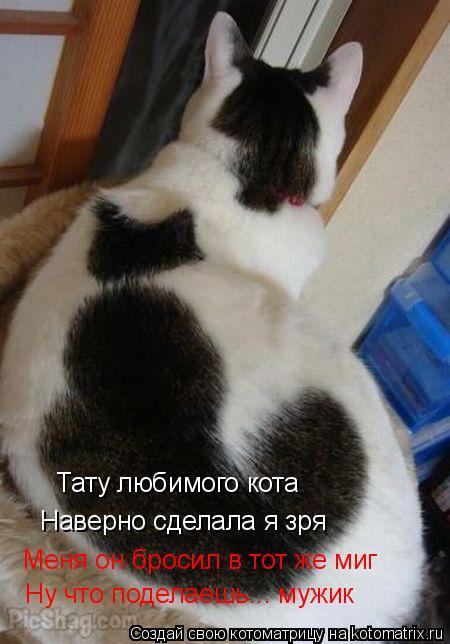 Котоматрица: Тату любимого кота Наверно сделала я зря Меня он бросил в тот же миг Ну что поделаешь... мужик