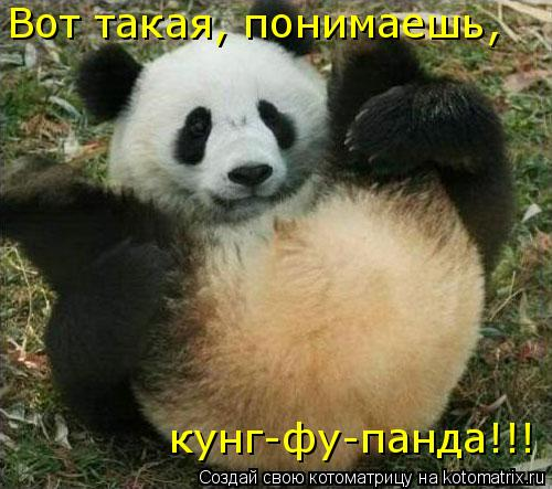 Котоматрица: Вот такая, понимаешь, кунг-фу-панда!!!