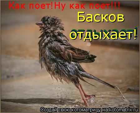 Котоматрица: Как поет!Ну как поет!!! Басков отдыхает! отдыхает! отдыхает!