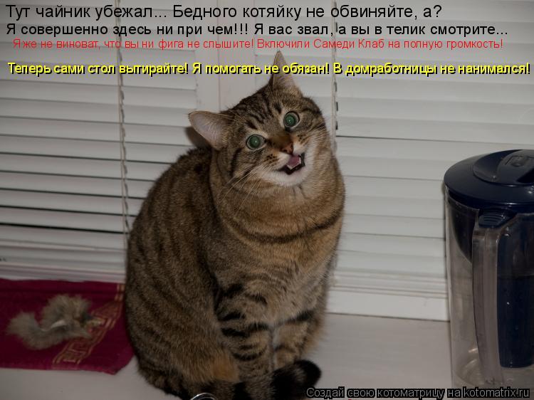 Котоматрица: Тут чайник убежал... Бедного котяйку не обвиняйте, а? Я совершенно здесь ни при чем!!! Я вас звал, а вы в телик смотрите... Я же не виноват, что вы